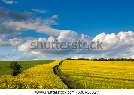 Spring fresh landscape of colorful fields, blue sky and ground road  - stock photo