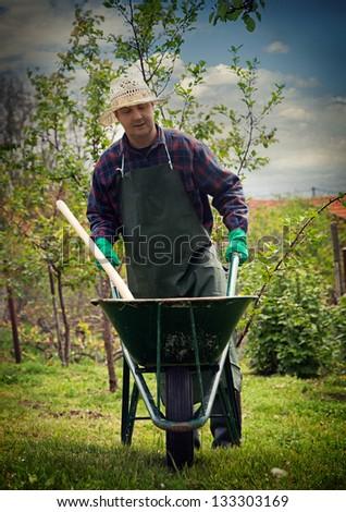 Spring garden concept. Male is doing garden work with wheelbarrow - stock photo