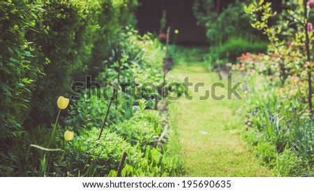 Spring garden scenery. Shallow DOF and beautiful light. - stock photo