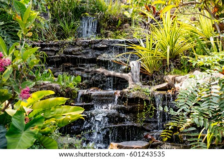 spring garden waterfall among the green tropical plants beautiful flower garden - Beautiful Flower Gardens Waterfalls