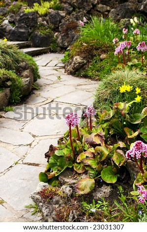 Spring garden with emerging perennial flowers and plants - stock photo