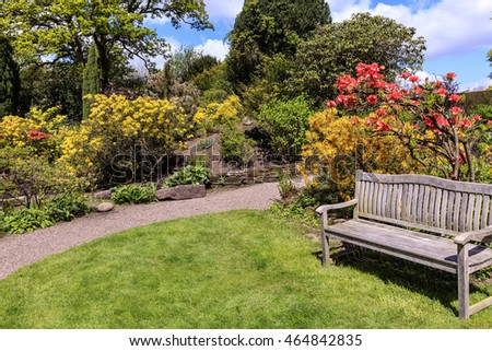 Spring garden with pink and yellow flowering shrubs and a wooden bench.