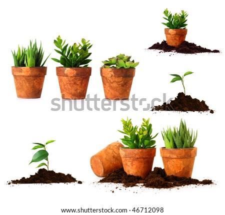 spring gardening - stock photo