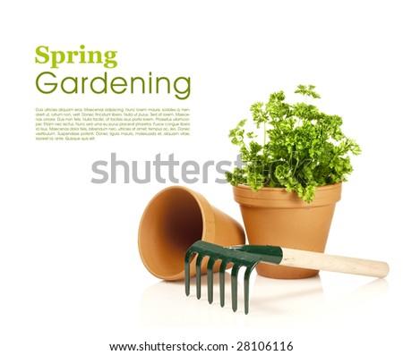 Spring gardening - garden tools on white - stock photo