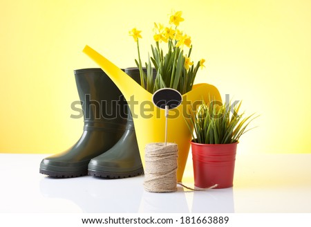 Spring gardening - Watering can,plants and garden tools on white  - stock photo