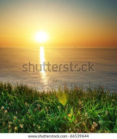 Spring grass and seascape. Nature composition. - stock photo
