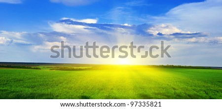 Spring grass grows on the field against the backdrop of the sunset. Spring landscape Panorama. - stock photo