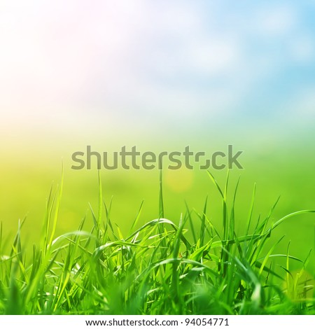 spring grass in sun light and defocused sky on background - stock photo