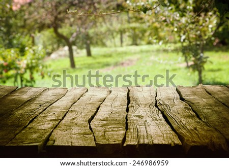 Spring green background. Garden and orchard art Design. Summer environmetal landscape concept. - stock photo