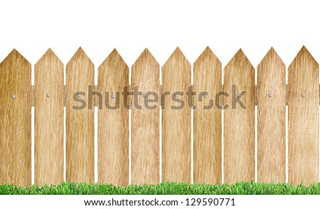 spring green grass and plant over wood fence - stock photo
