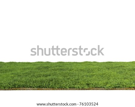 spring green grass isolated on white background - stock photo