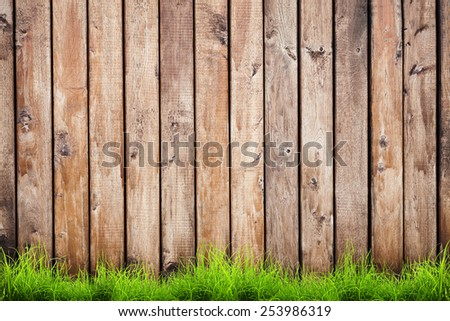 Spring green grass over wood fence background - stock photo