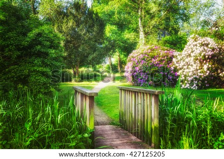 Spring green park. City park with green grass, pond, bridge, trees and blooming rhododendron. Springtime landscape background. Beauty in nature - stock photo