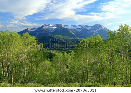 Spring greenery in the Wasatch Mountains, Utah, USA. - stock photo