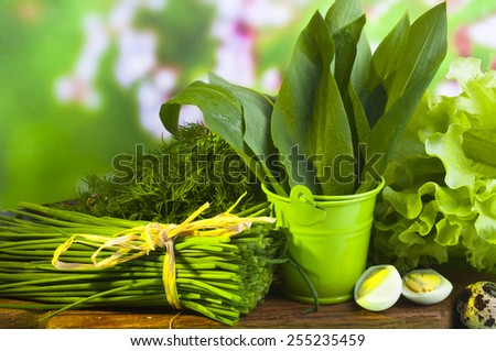 Spring greens: Wild leek on the bucket and fresh greens close up - stock photo