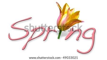 Spring Header - stock photo