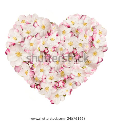 Spring heart made of blossoms, isolated on white background - stock photo