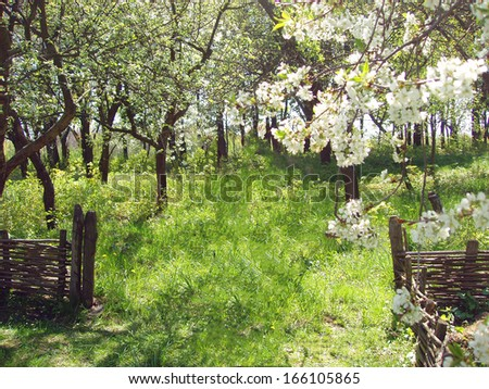 Spring in a Ukrainian village - stock photo
