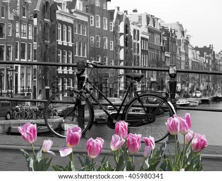 Spring in amsterdam - stock photo