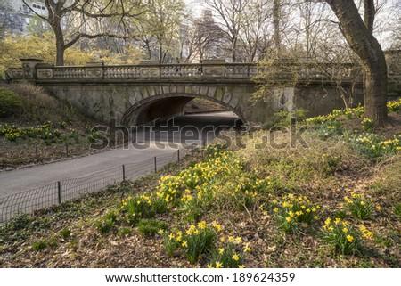 Spring in Central Park, New York City - stock photo