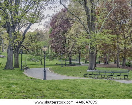 Spring in  Central Park with Japanese Cherry tree in full bloom - stock photo