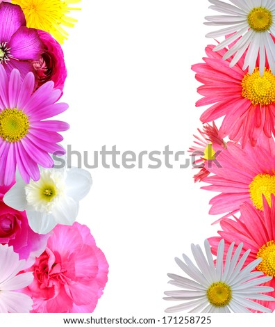 Spring in flowers background - stock photo
