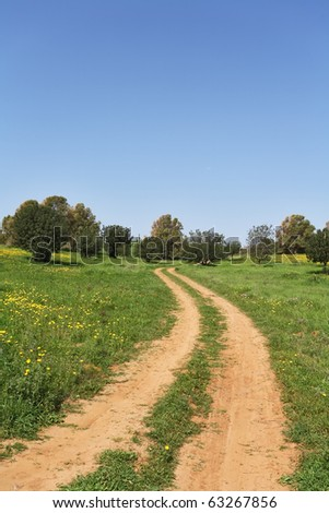 Spring in Israel. March at noon, the rural dirt road passes through green meadows and fields - stock photo