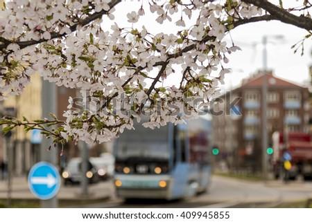 Spring in Oslo, Norway - stock photo