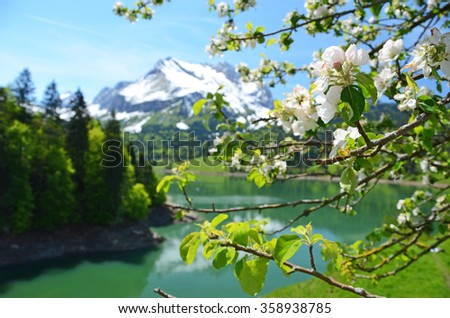 Spring in Switzerland - stock photo