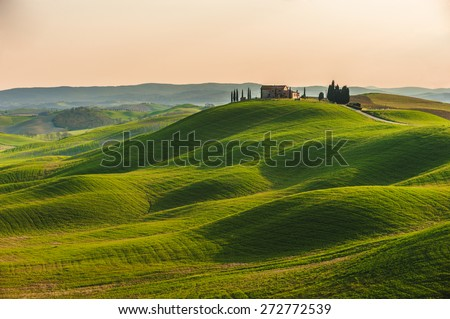 Spring in the fields of Tuscany in the sunset - stock photo