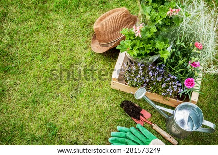 Spring in the garden. Flower seedlings, gardening tools (watering can, shovel, gloves) and gardener's hat on green grass from above. Background layout with free text space. - stock photo