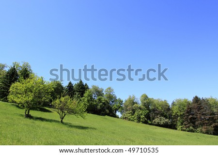 Spring Landscape and Blooming Trees on a Clear Blue Day - stock photo