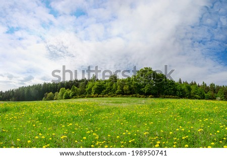Spring landscape, fresh green meadows - stock photo