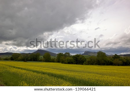 Spring landscape in fields of Alava and Navarre