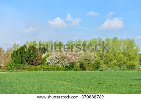 Spring landscape in Flemish Brabant, Belgium - stock photo