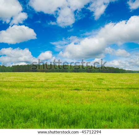 Spring landscape. Meadow, sky and forest. - stock photo