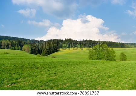 Spring landscape near the forest - stock photo