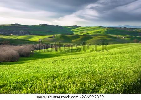 Spring landscape of countryside.Tuscany, Italy. - stock photo