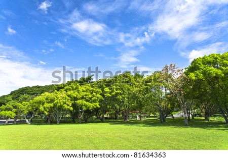 Spring Landscape on a Clear - stock photo
