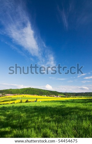 Spring landscape with a field of yellow rapeseed and blue sky