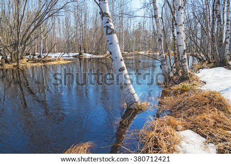 Spring landscape with birch trees and thawed on the river bank - stock photo