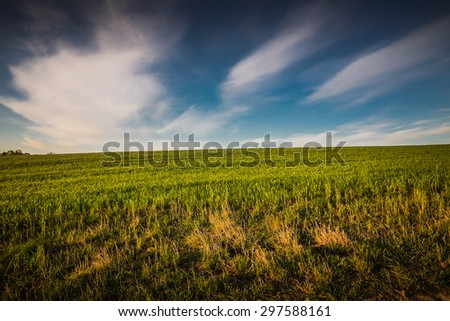 Spring landscape with green grass, road and clouds - stock photo