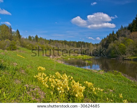 Spring landscape with river, flowers and forest.