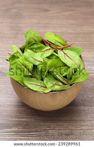 spring mangold salad  - stock photo