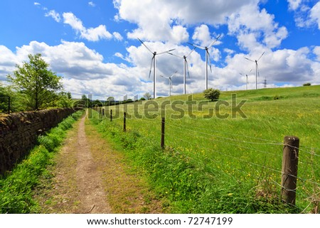 Spring meadow in Yorkshire - stock photo