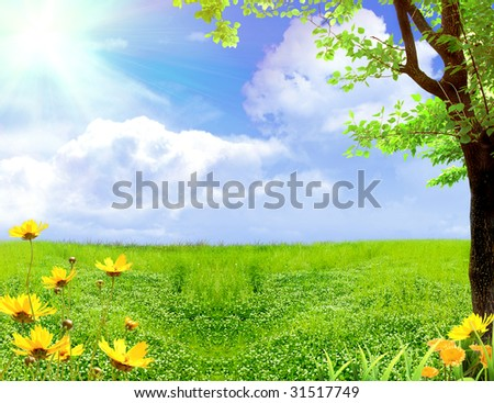 Spring meadow with flowers and a tree - stock photo