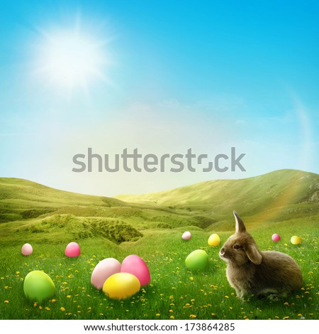 Spring meadow with rabbit and easter eggs - stock photo