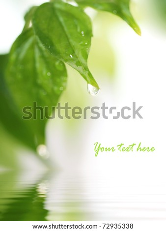 Spring nature background - stock photo