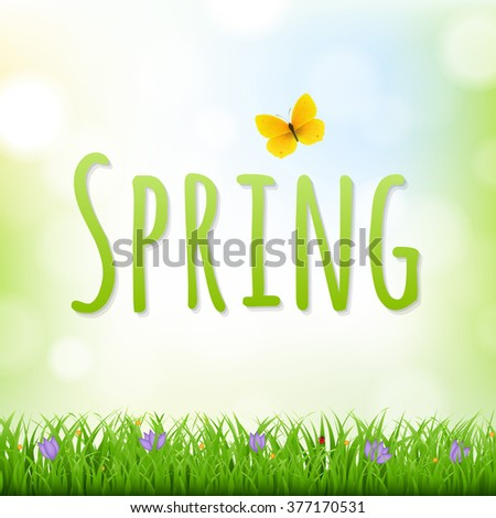 Spring Nature Background With Grass Border And Flowers - stock photo