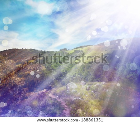 Spring nature background with sunshine / green landscape with sun beams/ Sunny forest early in the morning. - stock photo